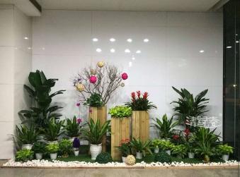 清绿春园林绿化工程官方网站建设